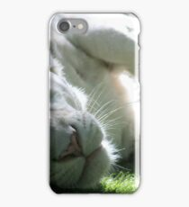 Sleepy White Tiger iPhone Case/Skin