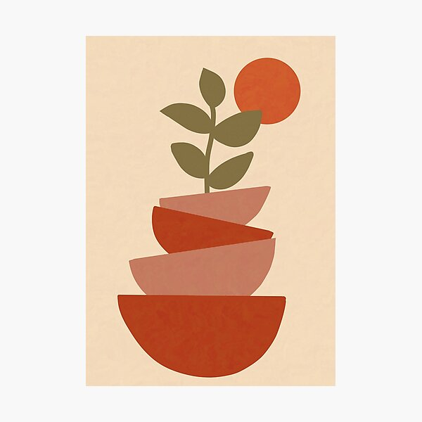 Minimalist Botanical Illustration Photographic Print