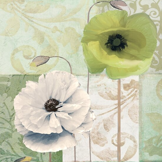 Calyx and Cream Poppies by mindydidit