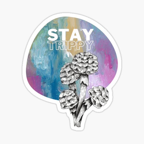 Stay Trippy A Sunset Rainstorm Shroom Sticker