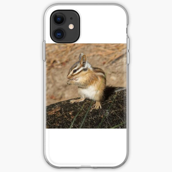 Pretty as a chipmunk iPhone Soft Case