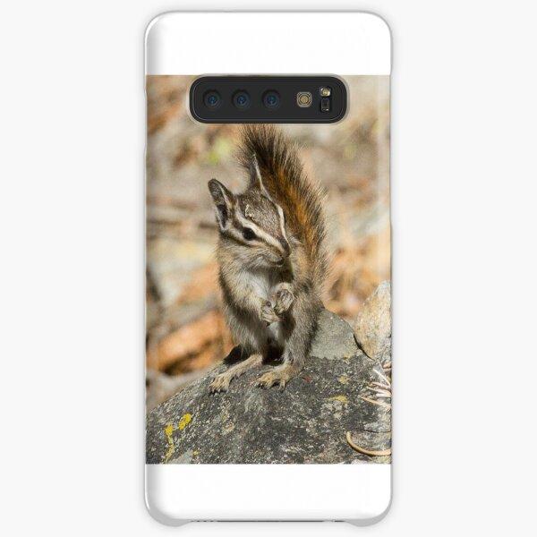 Hello chipmunk! Samsung Galaxy Snap Case
