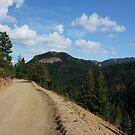 Old Gold Camp Road, Colorado Springs, Colorado (USA) by Lori Peters