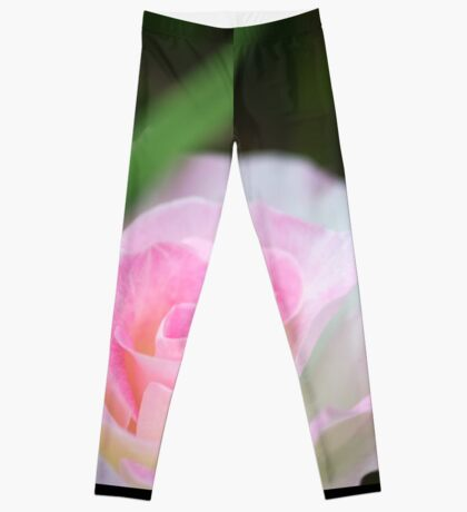 Seduced by a Rose Leggings
