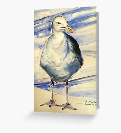 San Francisco seagull: pen and wash Greeting Card