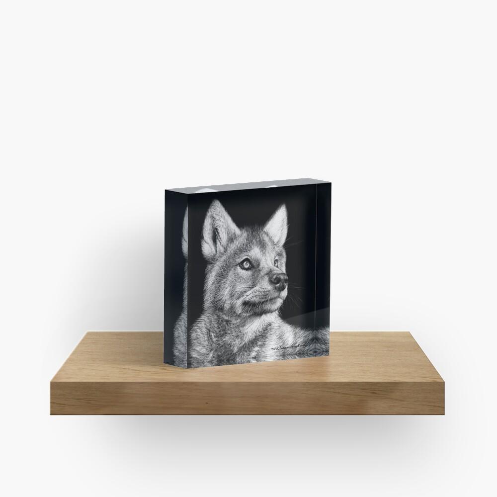 Wolf Pup Black and White Art Acrylic Block