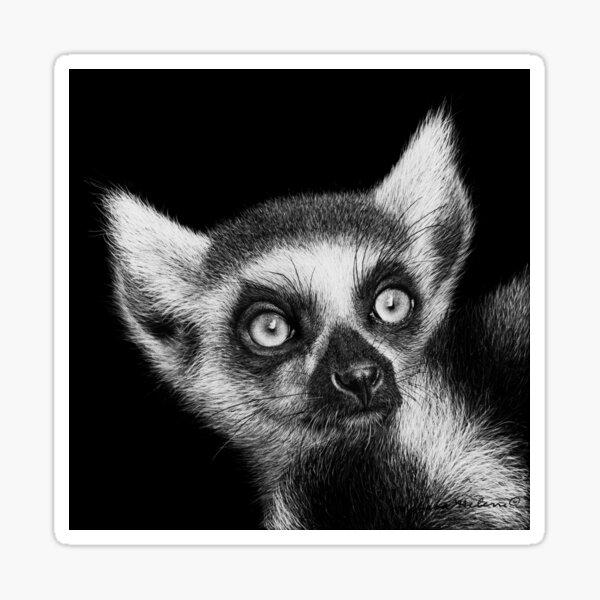 Ring-tailed Lemur Black and White Artwork Sticker