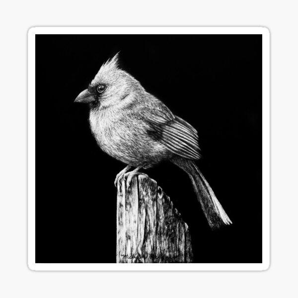 Cardinal Black and White Artwork Sticker