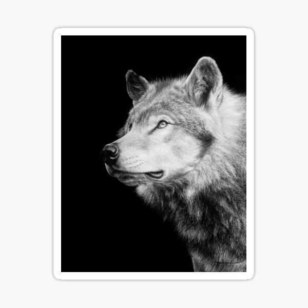 Timberwolf Black and White Artwork Sticker