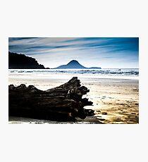 Drift wood on Ohope beach New Zealand Photographic Print