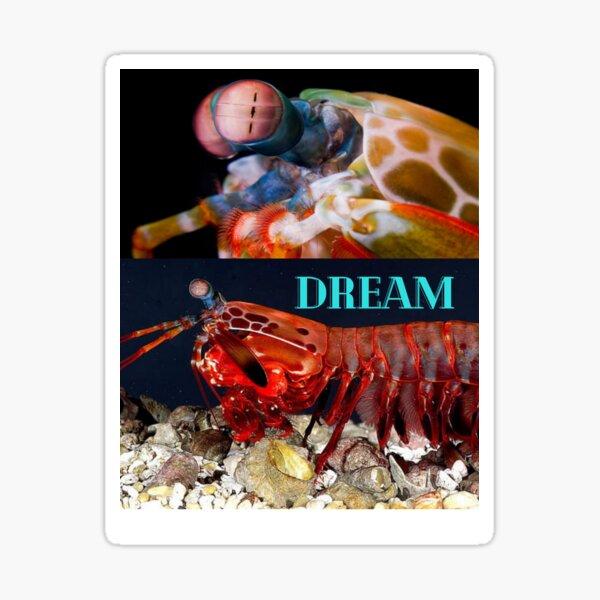 the dream Sticker