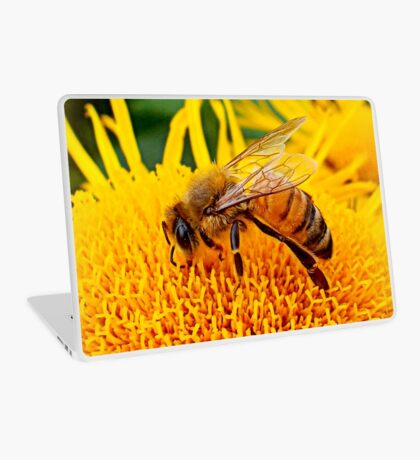 Honey Bee Laptop Skin