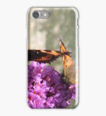 Butterflies on Budlea in the Garden iPhone Case/Skin