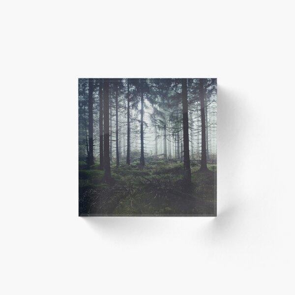 Through The Trees Acrylic Block