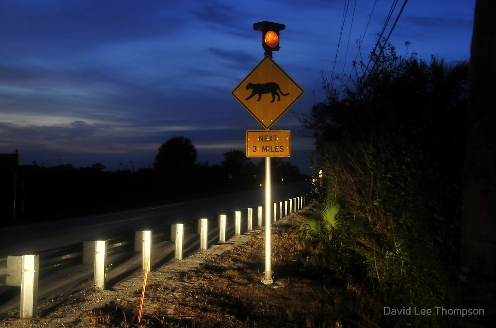 Road to extinction by David Lee Thompson