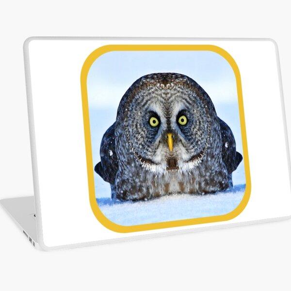 Chonky Owl Laptop Skin