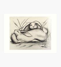 Sleeping Rabbits Art Print