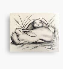 Sleeping Rabbits Metal Print