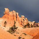 Bryce Amphitheatre and Storm by Jonathan Maddock