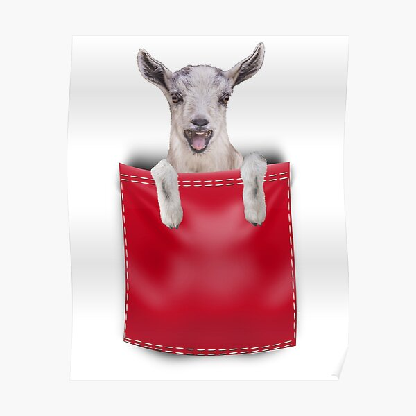 Goat in Your Pocket- Red Poster