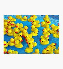 Duck Soup Photographic Print