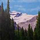 Peyto Glacier by Michael Beckett