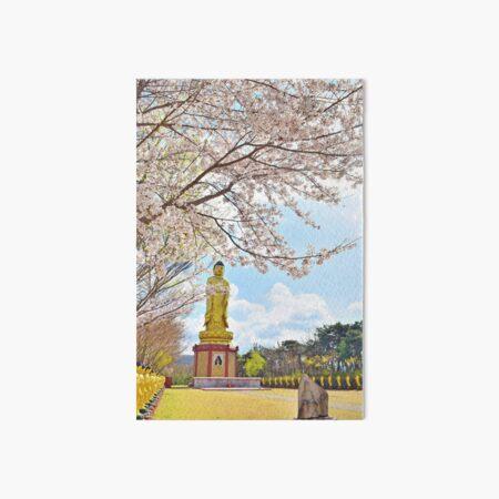 Cherry Blossoms and Buddha, Buddha Picture, Buddhist Gift, Buddhism, Cherry Blossoms Art Board Print