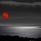 Red moon in the dark by Alessandra Antonini