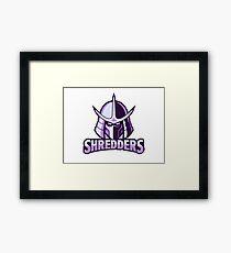 shredder, Teenage Ninja Turtle Framed Print