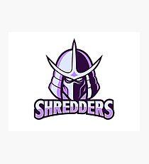 shredder, Teenage Ninja Turtle Photographic Print