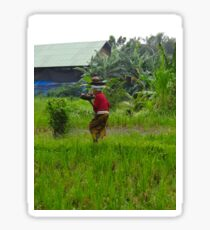 Balinese lady carrying pot Sticker