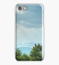 Avenues iPhone Case/Skin
