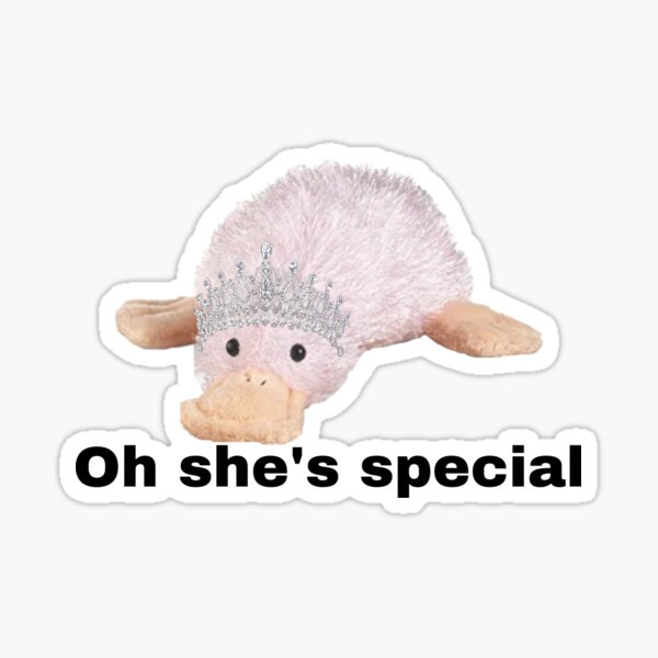 Webkinz waddles oh she's special  Sticker