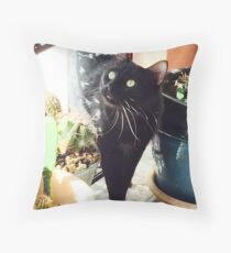 Mr. Mister  Personal Request Throw Pillow