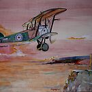 Sopwith Camel F1 by Ray-d