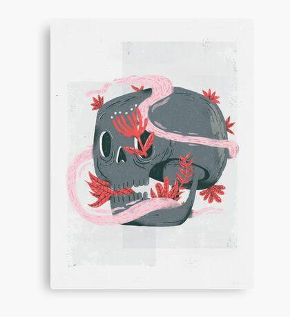 death and silence Canvas Print