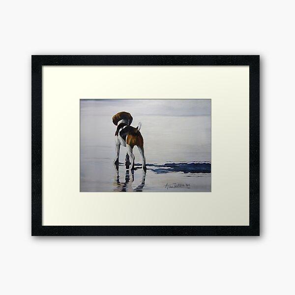 Beagle Reflections Framed Art Print
