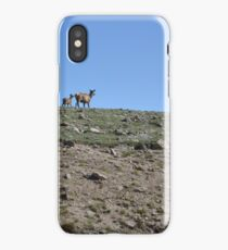 Mama and baby on the ridge iPhone Case