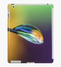 Spiritual Balance iPad Case/Skin