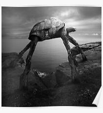 Turtlezaurus Poster