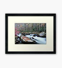 Let the River Flow... Framed Print