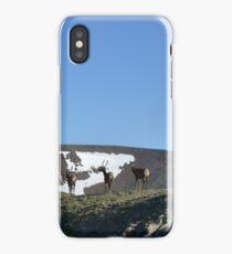 3 elk iPhone Case