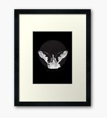 Black Swan- Nina Framed Print