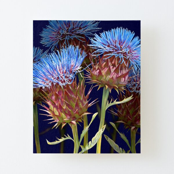 Scottish Thistle Canvas Mounted Print