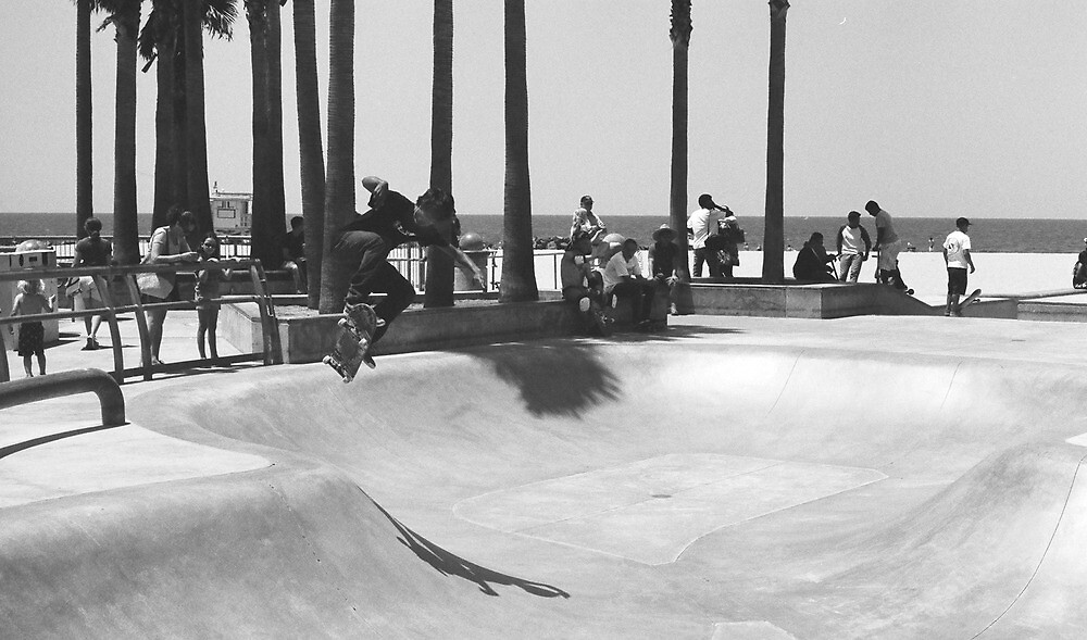 Venice Beach Skate Park by Michael Stocks