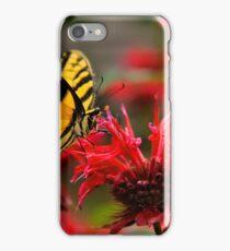 Tiger Swallowtail iPhone Case/Skin