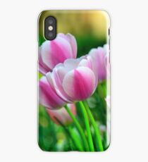 Pink Tulips in Spring iPhone Case/Skin