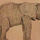 Baby Elephant by aprilann