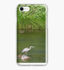 Urban Wildlife Habitat - Los Angeles River iPhone Case/Skin