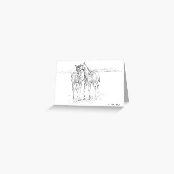 Foals at Play 1 Greeting Card